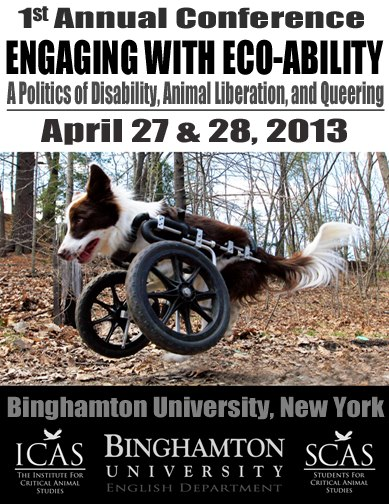 eco-ability flyer