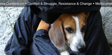 fb banner (beagle)