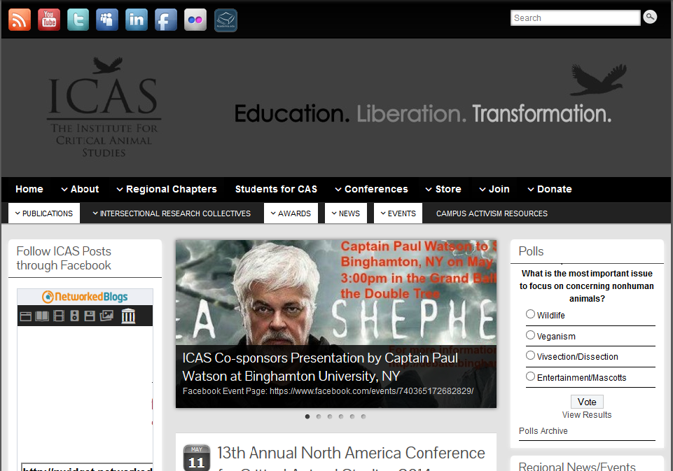 ICAS Website 77
