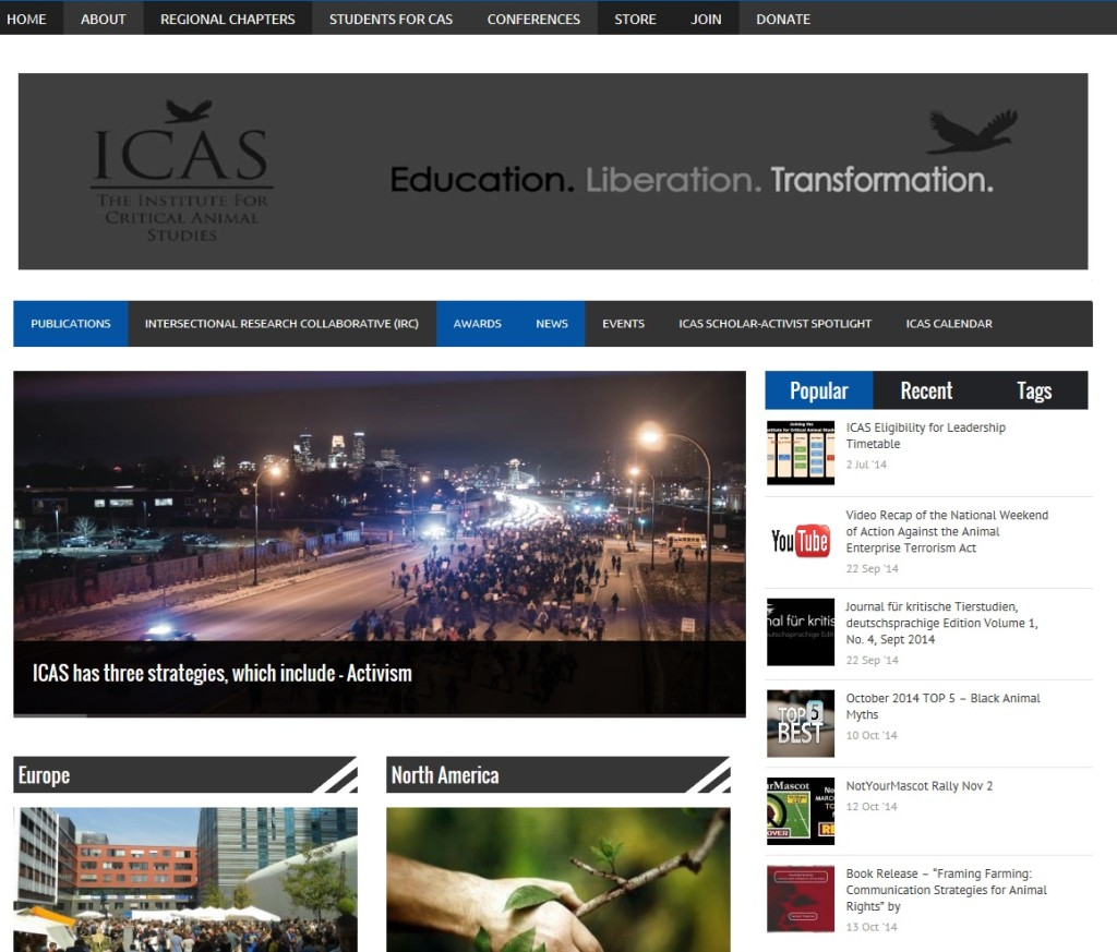 ICAS Website 9