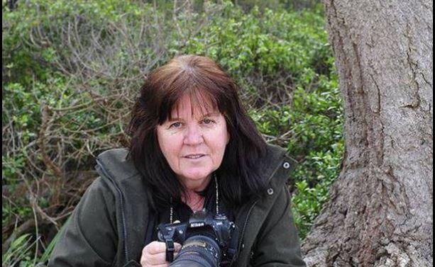 ICAS Scholar-Activist Profile Series – May 2014: Carolyn Drew