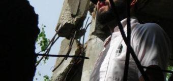 ICAS Scholar-Activist Profile Series – Ocober 2014: Johnny Lupinacci