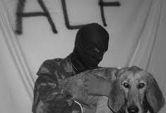 The ALF is the Original Direct Action Everywhere and Anonymous for the Voiceless